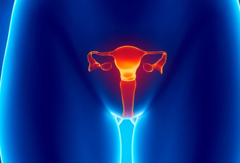 Curs en Uroginecologia Osteopàtica